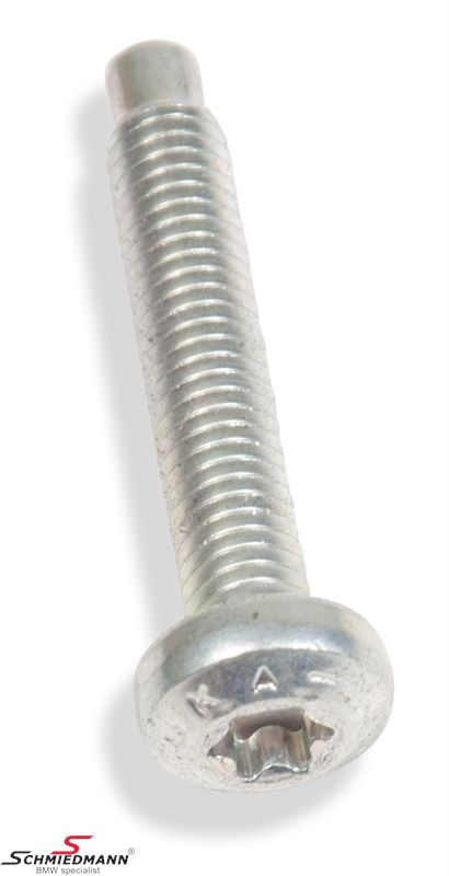TORXBOLT M6X30