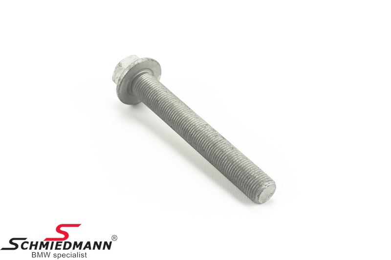 Bolt M16X110-U-10.9 for shockabsorber rear lower