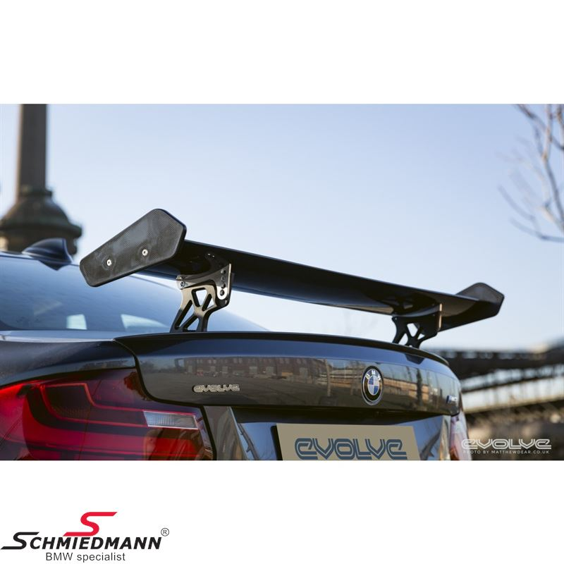 Rear wing M4 -GTS- genuine carbon