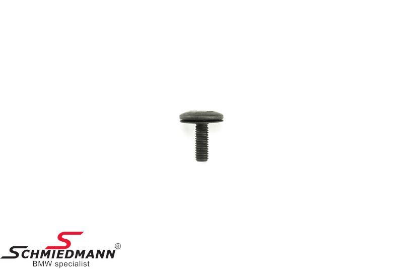 Torx bolt ISA M6X18 SW