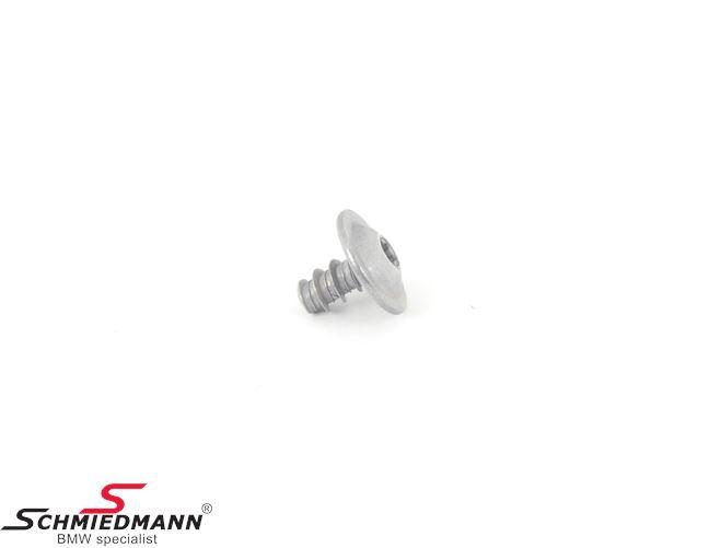 Fillister head screw