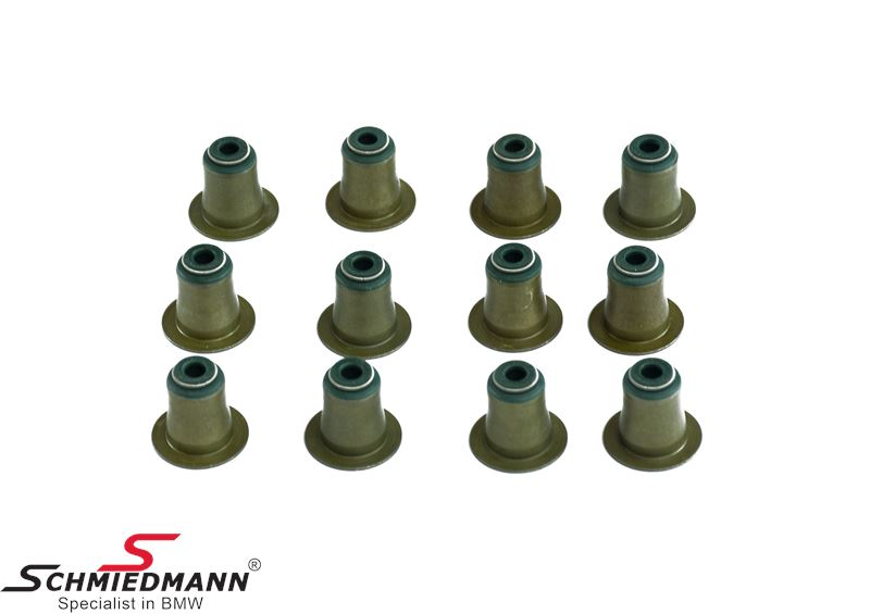 Valve seal kit with 12pcs (fits only 6MM valve stem)