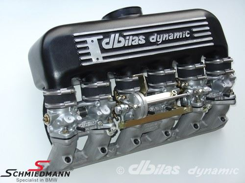 Sport intake-manifold dbilas with separate throttle housings