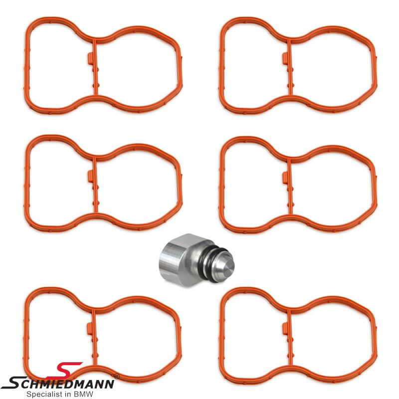 Swirl flap plug kit N57 with gaskets