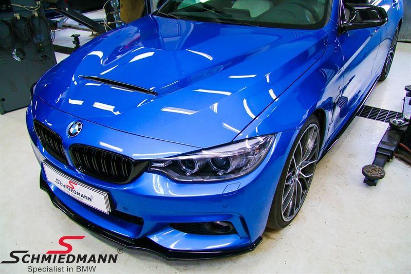 BMW F30 F31 F32 F33 F36 Motorhaube (Stahl) -EVO 3-