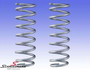 Lowering-set AC Schnitzer only front