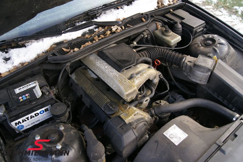Bmw E36 - Komplette Motorer - Schmiedmann